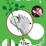 illustrasjon/bruksanvisning for Blom blomsterkniv. Norsk oppfinnelse av Stig Rath.
